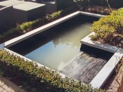 Vijver tuin Bilthoven
